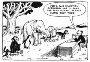 "This cartoon shows a bird, monkey, penguin, elephant, fish (in a bowl), seal and a dog with a man telling them ""For a fair selection, everybody has to take the same exam: Please climb that tree"". It is a copy of a cartoon by Hans Traxler from 1976 and is usually accompanied by a quote incorrectly attributed to Einstein - ""Everyone is a genius but if you judge a fish by its ability to climb a tree it will spend its whole life believing it is stupid."""